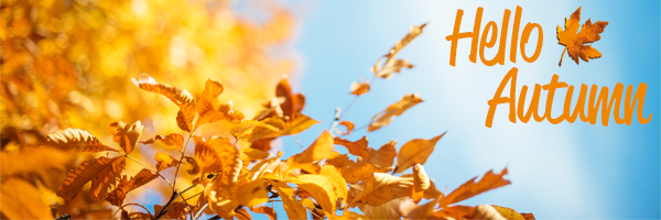 Herfstbladen