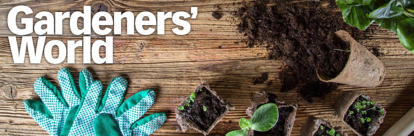 Gardeners' World nabestellen
