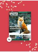 9x CHIP FOTO magazine cadeau-abonnement
