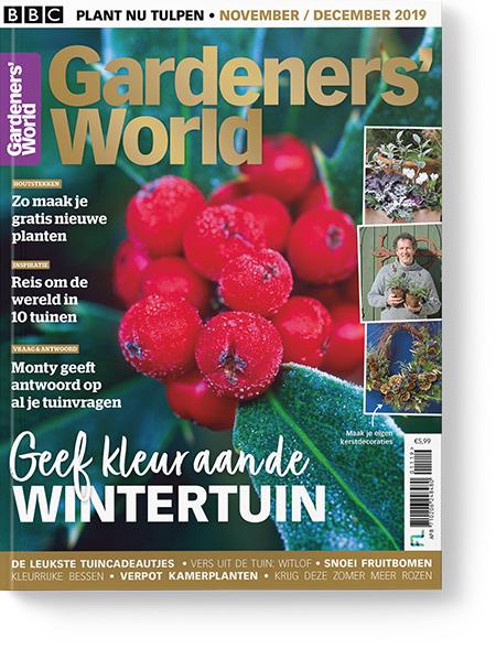 Afbeelding van Gardeners' World 2019-11-12